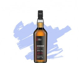 ancnoc-22-year-old